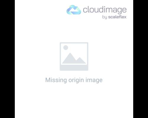 logical brain and emotional brain